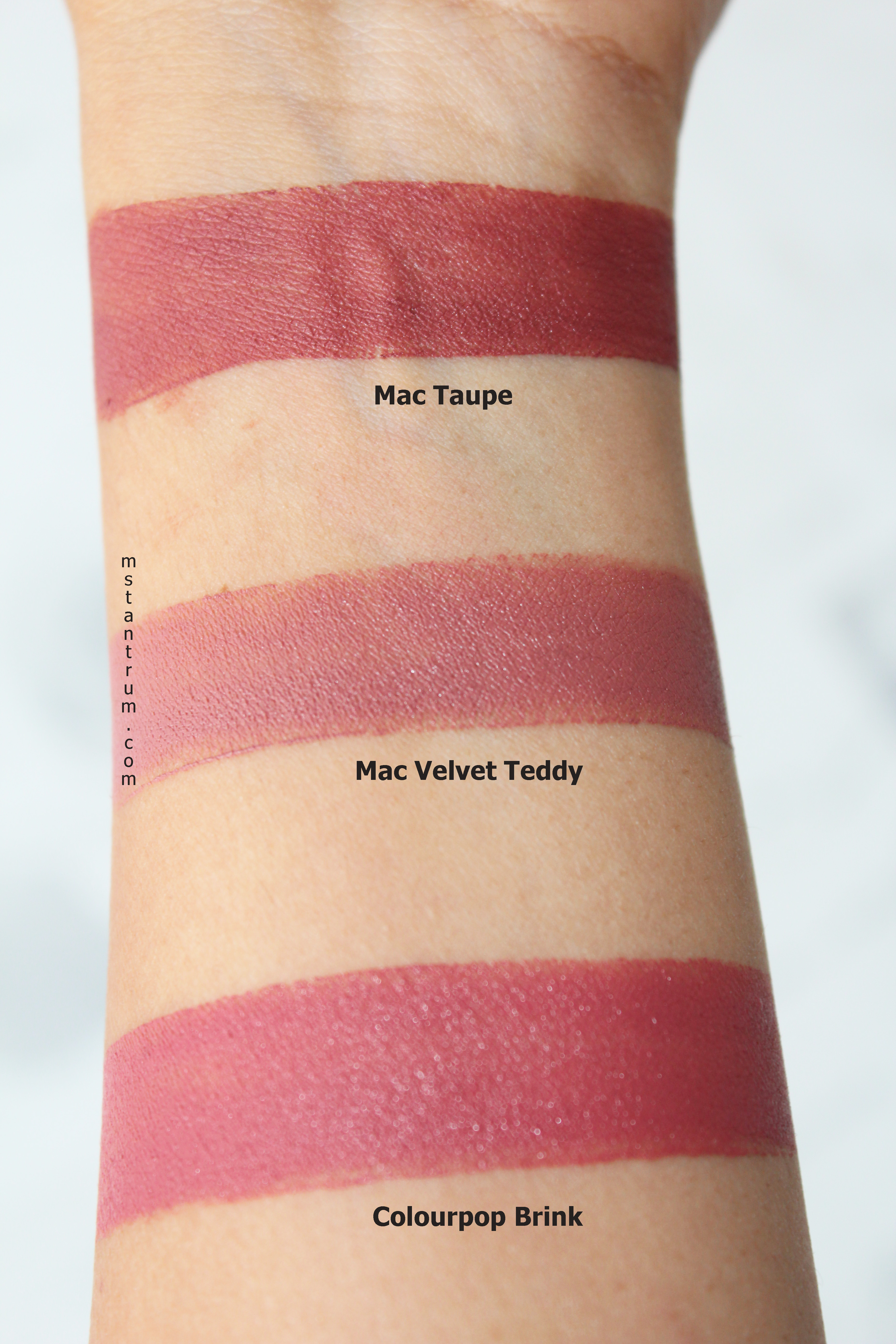 Summer to Fall Transition lipsticks swatches