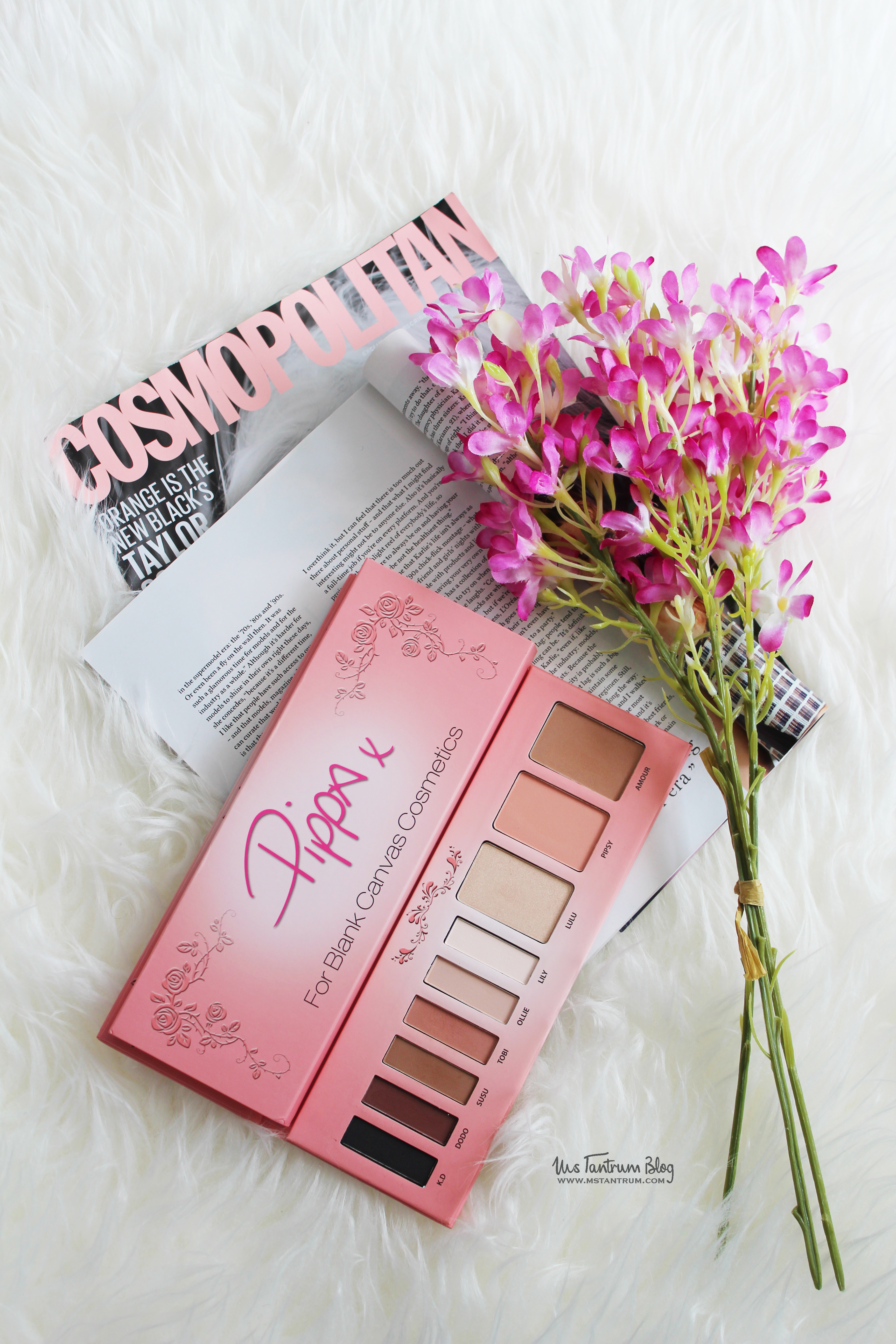 Blank Canvas Cosmetics Pippa Palette review